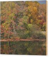 Autumn Tranquility 1 Wood Print