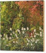 Autumn Tranquility 3 Wood Print
