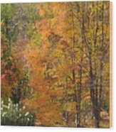 Autumn Tranquility 4 Wood Print