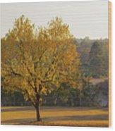 Autumn Tree At Sunset Wood Print