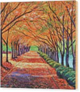 Autumn Tree Lane Wood Print