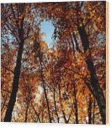 Autumn Tree Wood Print by Niki Mastromonaco