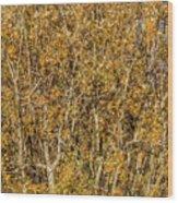 Autumn Tree Tangle Wood Print