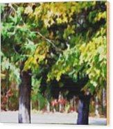 Autumn Trees 7 Wood Print
