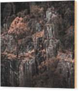 Autumn Trees Growing On Mountain Rocks Wood Print