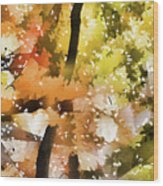 Autumn Trees In The Fog Wood Print