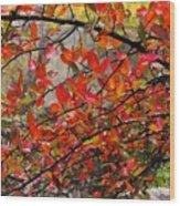 Autumn Trees Rock City Wood Print