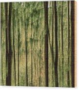 Autumn Trees, Scottish Borders Wood Print