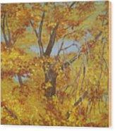 Autumn Treetops Wood Print