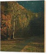 Autumn Tunnel Wood Print