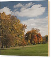 Autumn Under The Sky Wood Print