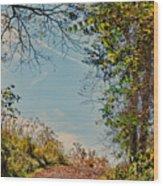 Autumn Up Hill Wood Print