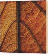 Autumn Veins Wood Print