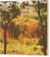 Autumn View, Montelle Winery, Augusta, Missouri Wood Print