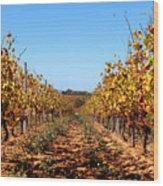 Autumn Vines Wood Print by K McCoy