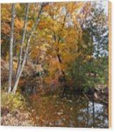 Autumn Vintage Landscape 5 Wood Print
