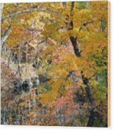 Autumn Vintage Landscape 6 Wood Print
