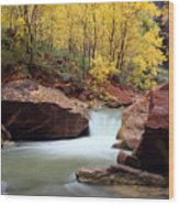 Autumn Virgin River In Zion Wood Print