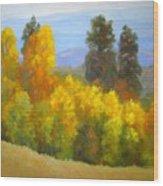 Autumn Vista Wood Print