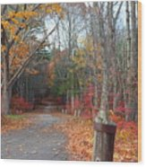 Autumn Walk At West Thompson Lake  Wood Print