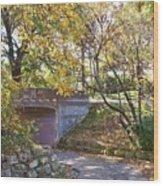 Autumn Walk In The Park Wood Print