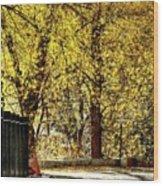 Autumn Walkway Wood Print