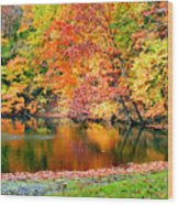 Autumn Warmth Wood Print