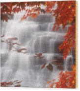 Autumn Waterfall I Wood Print