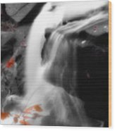 Autumn Waterfall Iv Wood Print