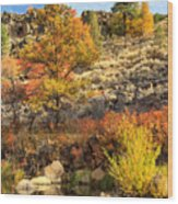 Autumn Waters Of The Susan River Wood Print