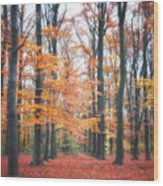 Autumn Whispers I Wood Print