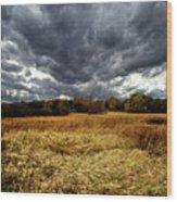 Autumn Winds Blow Wood Print