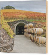 Autumn Wine Cave Wood Print