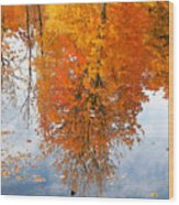 Autumn With Colorful Foliage And Water Reflection 19 Wood Print