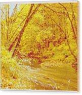 Autumn Woodland Stream Pennsylvania Digital Art Wood Print