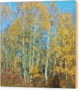 Autumn Woodlot Wood Print