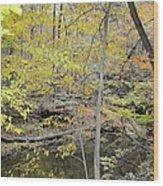 Autumn Woods 2 Wood Print