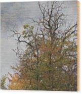 Autumn3 Wood Print