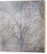 Autumn4 Wood Print