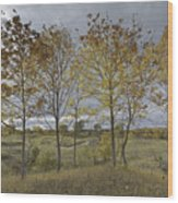 Autumnal Beauty Wood Print