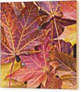 Autumnal Carpet Wood Print