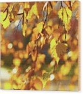 Autumnal Curtain Wood Print