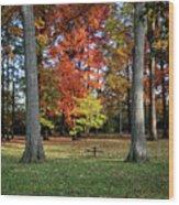 Autumnal Framework Wood Print