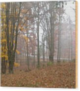 Autumnal Mist Wood Print