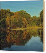 Autumnal Reflecion Wood Print