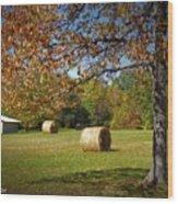 Autumnal Scenery Along Helmstetler Road Wood Print