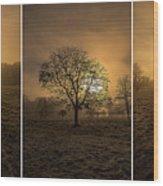Autumnal Triptych. Wood Print