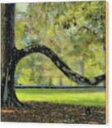 Autumns Bench Wood Print
