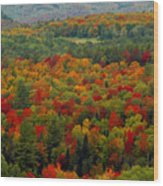 Autumns Colors Wood Print
