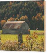 Autumns Colors Wood Print by Sandra Cunningham